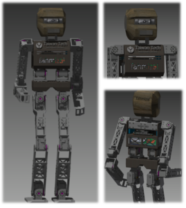TennSize Biped Robot Fahmizal